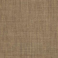 Sunbrella Augustine Fennel 5928-0033 Sling Upholstery Fabric