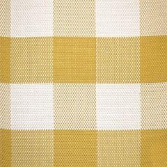 Scalamandre Sunbrella Check it Out Zinnia 2 Upholstery Fabric