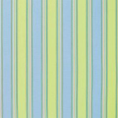 Sunbrella Bravada Limelite 5602-0000 Upholstery Fabric