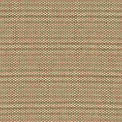 Sunbrella Sailing Suntan 50143-0003 Sling Upholstery Fabric