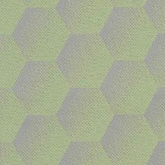 Sunbrella Hexagon Mint HEX J206 140 European Collection Upholstery Fabric