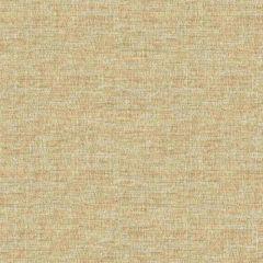 Kravet Sunbrella Beige 34236-16 Upholstery Fabric
