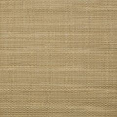 Sunbrella Augustine Golden 5928-0049 Sling Upholstery Fabric