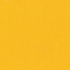 Sunbrella Clarity 83002-0000 Sunflower 60-Inch Awning / Marine Fabric