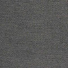 Silver State Sunbrella Duality Basalt Metropolis Collection Upholstery Fabric