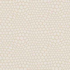 Sunbrella Connect Eggshell CNT J268 140 Marine Decorative Collection Upholstery Fabric