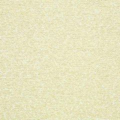 Sunbrella Emerge Sand 42069-0000 Exclusive Collection Upholstery Fabric