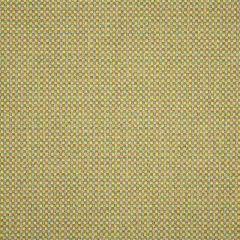Sunbrella Depth Citronelle 16007-0007 Dimension Collection Upholstery Fabric