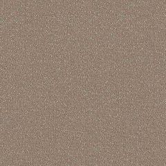 Sunbrella Reef Chestnut REE J311 140 Marine Decorative Collection Upholstery Fabric