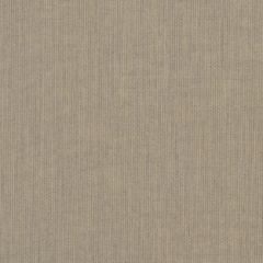Sunbrella RAIN Spectrum Mushroom 48031-0000 77 Waterproof Upholstery Fabric