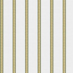 Fabricut Sunbrella Pier Stripe Reed 6672203 Ocean Collection by Kendall Wilkinson Upholstery Fabric