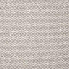 Sunbrella Ramona-Dove 5323-0002 Sling Upholstery Fabric