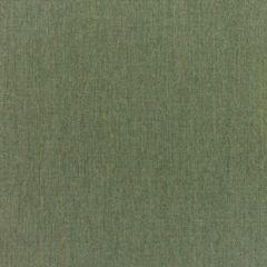 Sunbrella RAIN Canvas Fern 5487-0000 77 Waterproof Upholstery Fabric