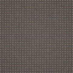 Sunbrella Depth Fossil 16007-0003 Dimension Collection Upholstery Fabric