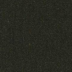 Sunbrella Renaissance Heritage Char 18009-0000 Upholstery Fabric