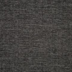 Sunbrella Platform Char 42091-0002 The Pure Collection Upholstery Fabric