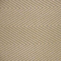 Scalamandre Sunbrella Cortez Hill Dune 6 Elements III Collection Upholstery Fabric