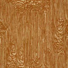 Groundworks Sunbrella Zuma Rust GWF-3418-22 by Kelly Wearstler Upholstery Fabric
