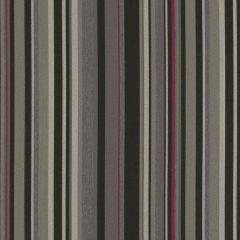 Sunbrella by Mayer Infinity Zodiac 415-006 Imagine Collection Upholstery Fabric