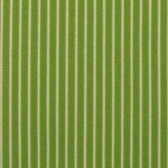Duralee Sunbrella Spring Green 15351-254 Pavilion Stripes Upholstery Fabric
