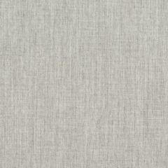 Sunbrella RAIN Canvas Granite 5402-0000 77 Waterproof Upholstery Fabric