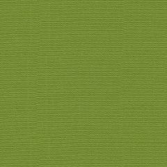 Groundworks Sunbrella Canopy Solid Lime GWF-2507-323 by Ashley Hicks Upholstery Fabric