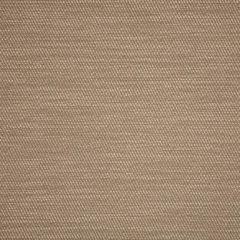 Sunbrella Pueblo Dune 50202-0002 Sling Upholstery Fabric