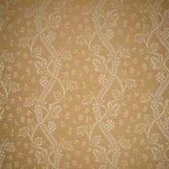Scalamandre Sunbrella Sonoma Oak 1 Elements I Collection Upholstery Fabric