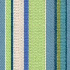 Kravet Sunbrella Cummerbund Tropicale 31504-135 the Echo Design Collection Upholstery Fabric