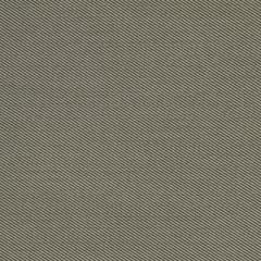 Robert Allen Sunbrella Contract St Tropez Dune 222302 Upholstery Fabric