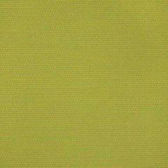 Sunbrella Decree II Limelite 40390-0000 Exclusive Collection Upholstery Fabric