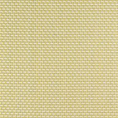 Sunbrella Augustine Pear 5928-0040 Sling Upholstery Fabric