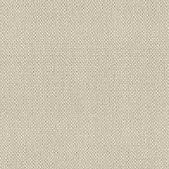Sunbrella Plus Oyster 8442-0000 60-inch Awning / Marine Fabric