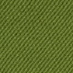 Robert Allen Sunbrella Contract St Tropez Keylime 222298 Upholstery Fabric