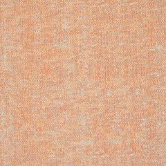 Silver State Sunbrella Primo Petal Modern Eclectic Collection Upholstery Fabric