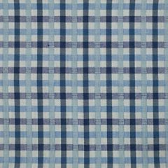 Scalamandre Sunbrella ST. Kitts Indigo 3 Upholstery Fabric