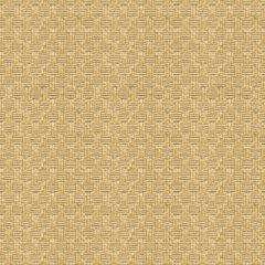 Lee Jofa Sunbrella Bosphorus Check Straw 2013105-416 Upholstery Fabric