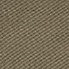 Robert Allen Sunbrella Contract St Tropez Sand 222295 Upholstery Fabric