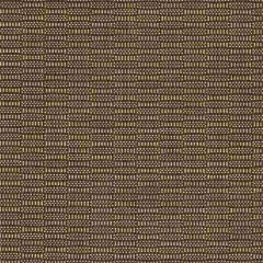 Sunbrella Havana Java 50017-0007 Sling Upholstery Fabric