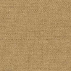 Stout Sunbrella Globe Sandlewood 4 Take it Easy Indoor/Outdoor Collection Upholstery Fabric
