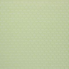 Sunbrella Thibaut Gemma Spring Green W80765 Solstice Collection Upholstery Fabric