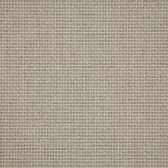 Sunbrella System Dune 50198-0001 54 Inch Sling Upholstery Fabric