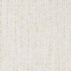 Stout Sunbrella Nifty Smoke 1 Shine on Performance Collection Upholstery Fabric