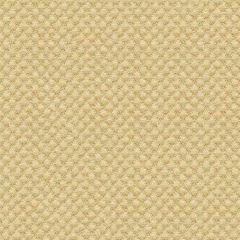 Kravet Sunbrella Tan 25807-414 Guaranteed in Stock Upholstery Fabric