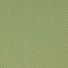 Sunbrella Thibaut Shibori Dot Kiwi W80029 Portico Collection Upholstery Fabric