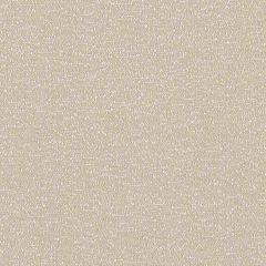 Sunbrella Reef Cocoon REE J308 140 Marine Decorative Collection Upholstery Fabric