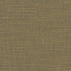 Sunbrella Silica Sesame 6060-0000 60-inch Awning / Marine Fabric
