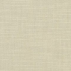 Sunbrella Silica Silver 6062-0000 60-inch Awning / Marine Fabric