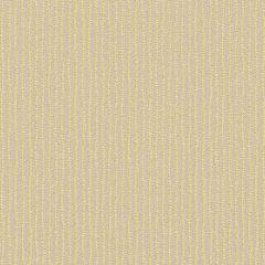 Sunbrella Trail Sulfur TRL J300 140 Marine Decorative Collection Upholstery Fabric