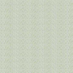 Fabricut Sunbrella Sun Waves Grass 6671302 Ocean Collection by Kendall Wilkinson Upholstery Fabric